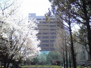 熊本大学工学部「夏休みの自由研究に関する技術相談会」