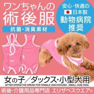 犬の服 必要性