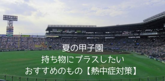 高校野球【夏の甲子園】2018年〜持ち物にプラスしたいおすすめのもの【熱中症対策】