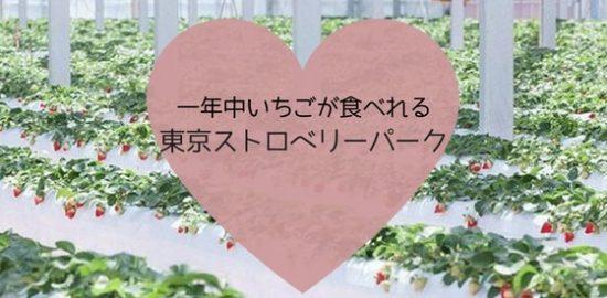 【東京ストロベリーパーク】一年中いちごが食べれるテーマパーク
