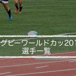 【ラグビーワールドカップ2019】選手一覧
