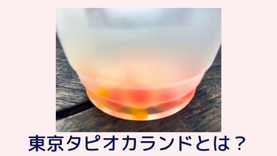原宿【東京タピオカランド】入店方法、混雑状況を詳しく解説!!