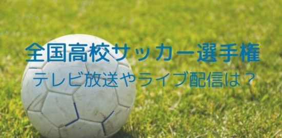 全国高校サッカー選手権2019~2020