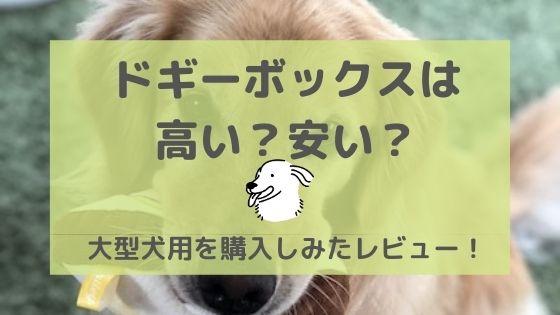 ドギーボックス(口コミ)は高い?安い?〜大型犬用を購入しみてレビュー!