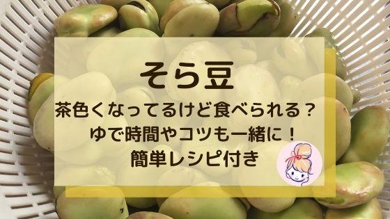 そら豆が茶色くなってるけど食べられる?〜茹で時間やコツも一緒に!