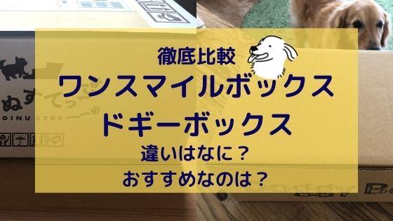 ワンスマイルボックスとドギーボックスの違いは?【徹底比較】愛犬におすすめなのはどっち?